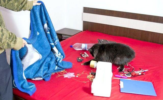 अपने कमरे में से नाराज परिवार के सदस्यों को रखें शीर्षक वाला चित्र चरण 7