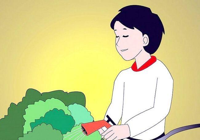 टीच वैल्यू चरण 17 के शीर्षक वाला छवि