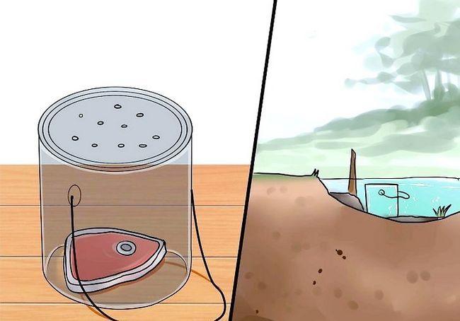 किल लीवस चरण 8 नामक छवि