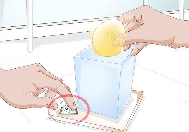 हैच अंडे के चरण 20 में इनक्यूबेटर का प्रयोग करें शीर्षक वाला चित्र