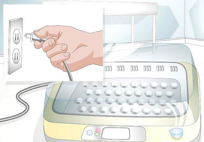 हैच अंडे के चरण 4 में इनक्यूबेटर का प्रयोग करें शीर्षक वाला चित्र