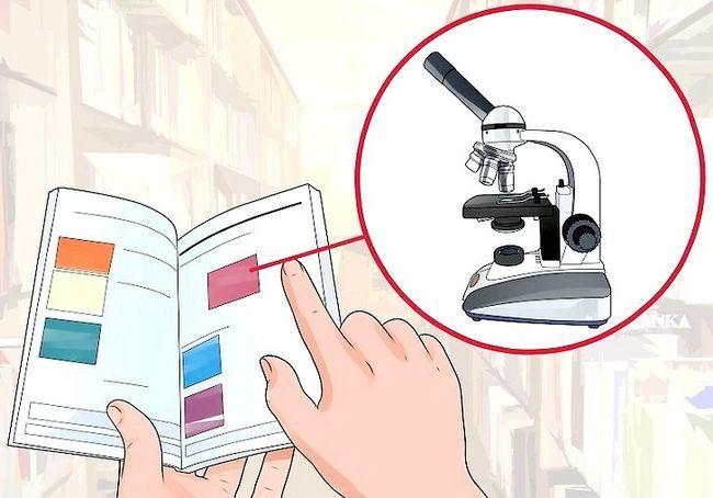 एक मिश्रित माइक्रोस्कोप का उपयोग कैसे करें