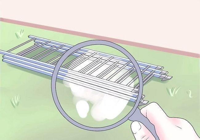 एक एक्स्टेंसिबल स्केल का उपयोग कैसे करें