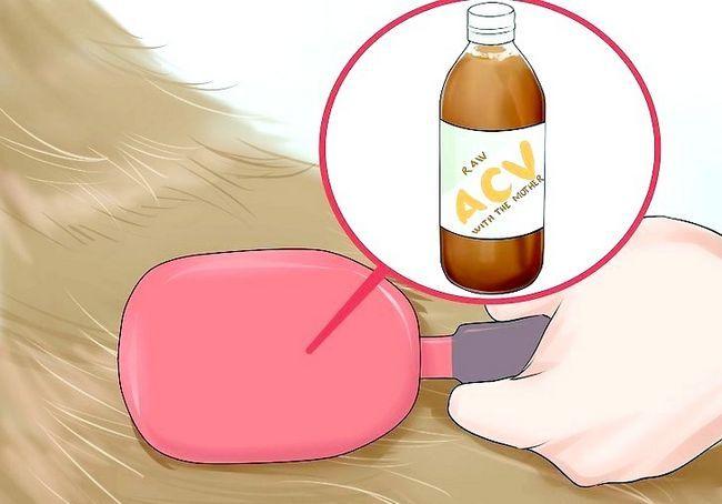 अपने कुत्ते के लिए सेब के सिरका का उपयोग कैसे करें