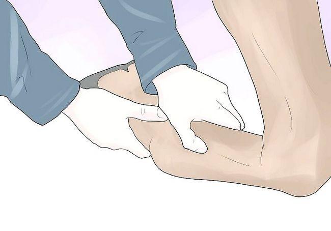 एक घोड़े का एक तेंदुआ की चोट का मूल्यांकन कैसे करें