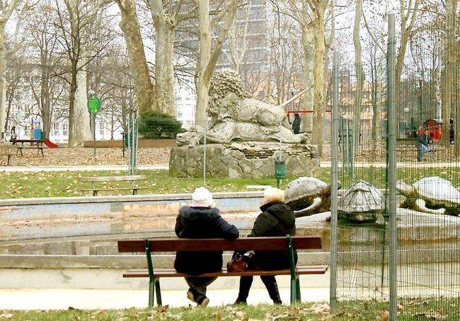 लाइव अकेली खुशी से चरण 6 शीर्षक वाली छवि