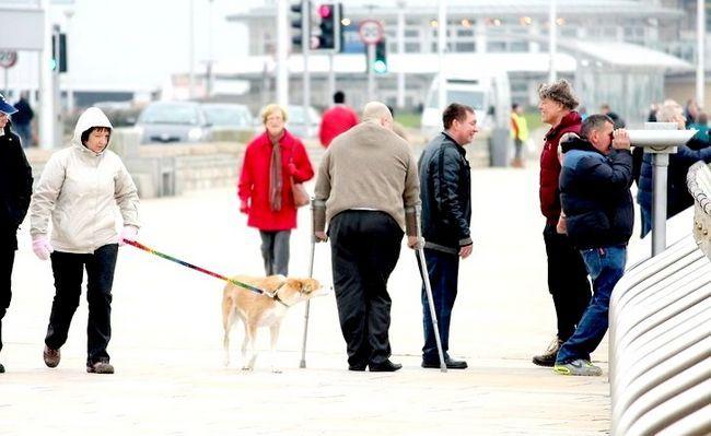 अच्छा परिवार के बिना जीवन जीने के लिए एक अच्छा जीवन शीर्षक शीर्षक छवि 3